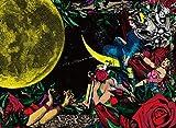夜、カルメンの詩集(初回盤)
