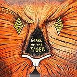 Glare of the Tiger [Analog]