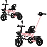 Girl Pink Push Along Tricycle Baby Toddler Trike Bike 3 Wheel Ride On Toy Children Infant Parent Handle Comfortable Seat Larg