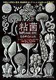 「粘菌 知性のはじまりとそのサイエンス: 特徴から研究の歴史、動画撮影法、...」販売ページヘ