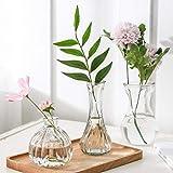 ガラスの花瓶 花器 フラワーベース 高級感 ガラスベース 3つセット ガラスボトル アレンジ インテリア 水栽培 生け花 造花 おしゃれ シンプル インテリア雑貨 飾り瓶 北欧 レトロ風