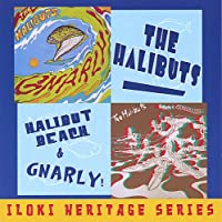 Halibut Beach/Gnarly