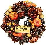大橋新治商店 ハロウィンリース Halloween ブラウン 25cm 28-078