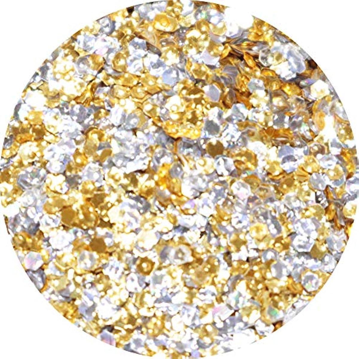 ファイルチャールズキージングアクロバットMATIERE エンボスホログラム ゴールド×シルバー