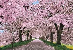 450ピース ジグソーパズル 桜に染まる権現堂―埼玉 スモールピース(26x38cm)