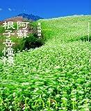 阿蘇 根子岳憧憬 (風景写真books artist selection)