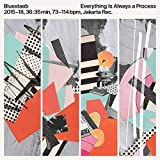EVERYTHING IS ALWAYS A [12 inch Analog]