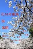 2014年東京桜満開