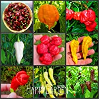 種子パッケージ: !新ARRLの100pcs / Packは16 NDSホットチリペッパートウガラシ野菜盆栽を選択する、ハッピーファーム、#のADC316:MIX