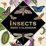 2020 壁掛けカレンダー 虫と昆虫カレンダー 12 x 12インチ 月間表示 16ヶ月 180リマインダーステッカー付き