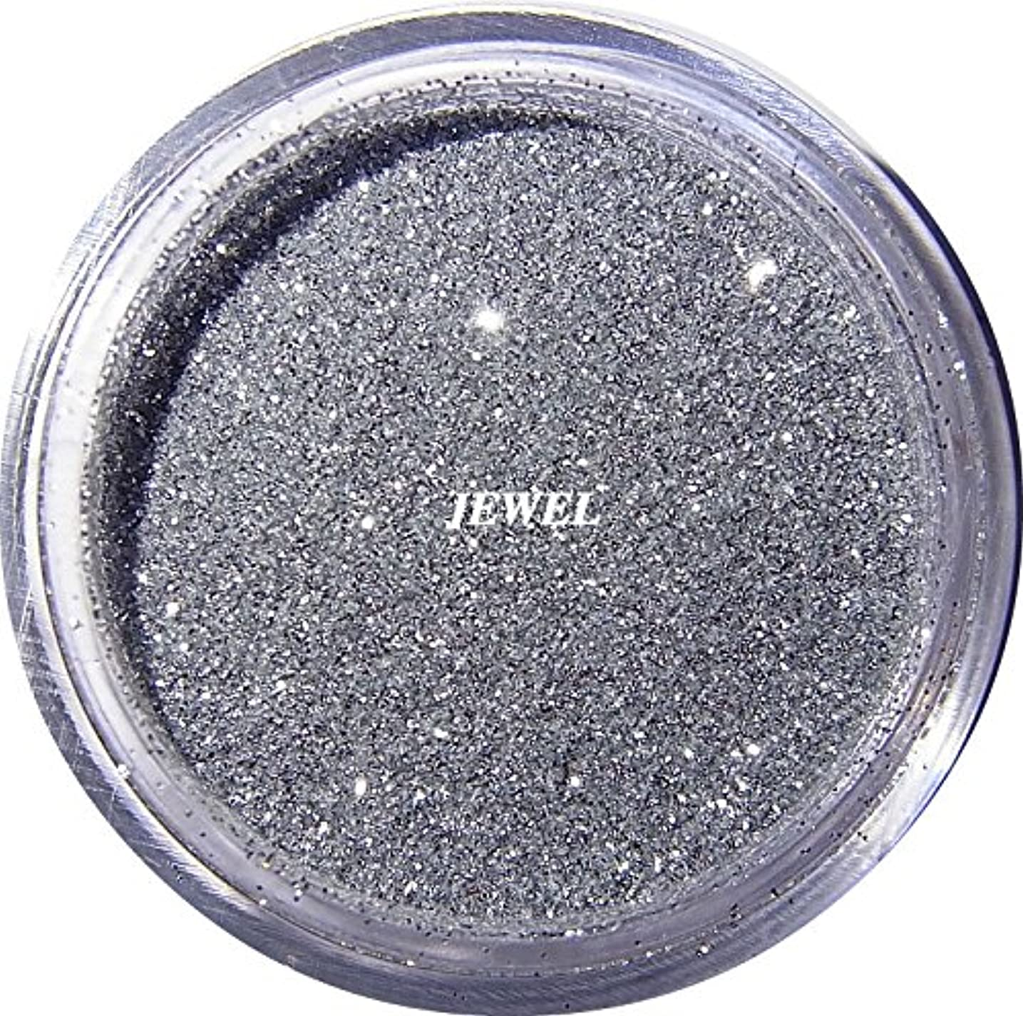今日泣いているネスト【jewel】 超微粒子ラメパウダー(銀/シルバー) 256/1サイズ 2g入り レジン&ネイル用 グリッター