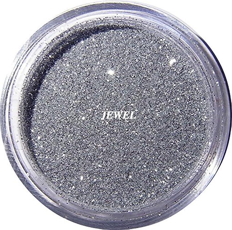 トレード複合プロトタイプ【jewel】 超微粒子ラメパウダー(銀/シルバー) 256/1サイズ 2g入り レジン&ネイル用 グリッター