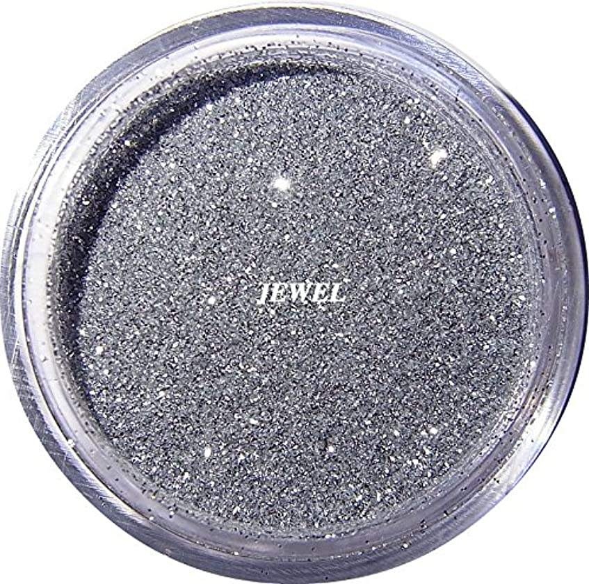事故おもてなし祝福【jewel】 超微粒子ラメパウダー(銀/シルバー) 256/1サイズ 2g入り レジン&ネイル用 グリッター
