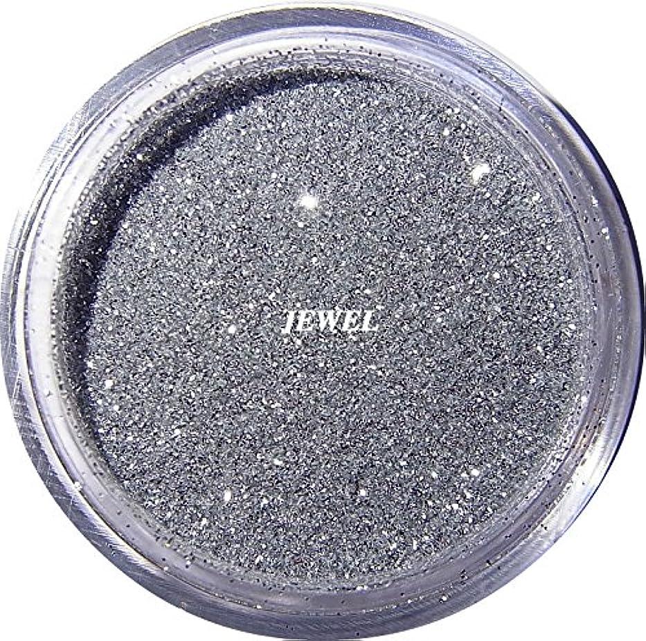 移動チケット移動【jewel】 超微粒子ラメパウダー(銀/シルバー) 256/1サイズ 2g入り レジン&ネイル用 グリッター