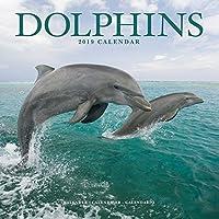 Dolphins Calendar 2019
