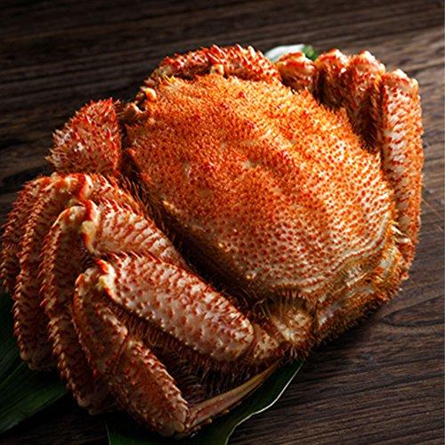 特大サイズ 北海道産 毛蟹 [800g ×1尾] 毛蟹 毛ガニ お歳暮