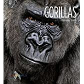 Gorillas (Living Wild)