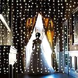 【水中にも適用】AGPtEK 3M×3M/300 LEDカーテンライト USB給電式 8 点滅 パターン結婚式、学園祭、誕生会、ハロウィーン、クリスマスパーティー、バレンタインデー、記念日などイベント大活躍 飾り 防水国際基準防水IP67 LEDイルミネーションライト コントローラ付き 日本語取扱説明書 (ホワイト)