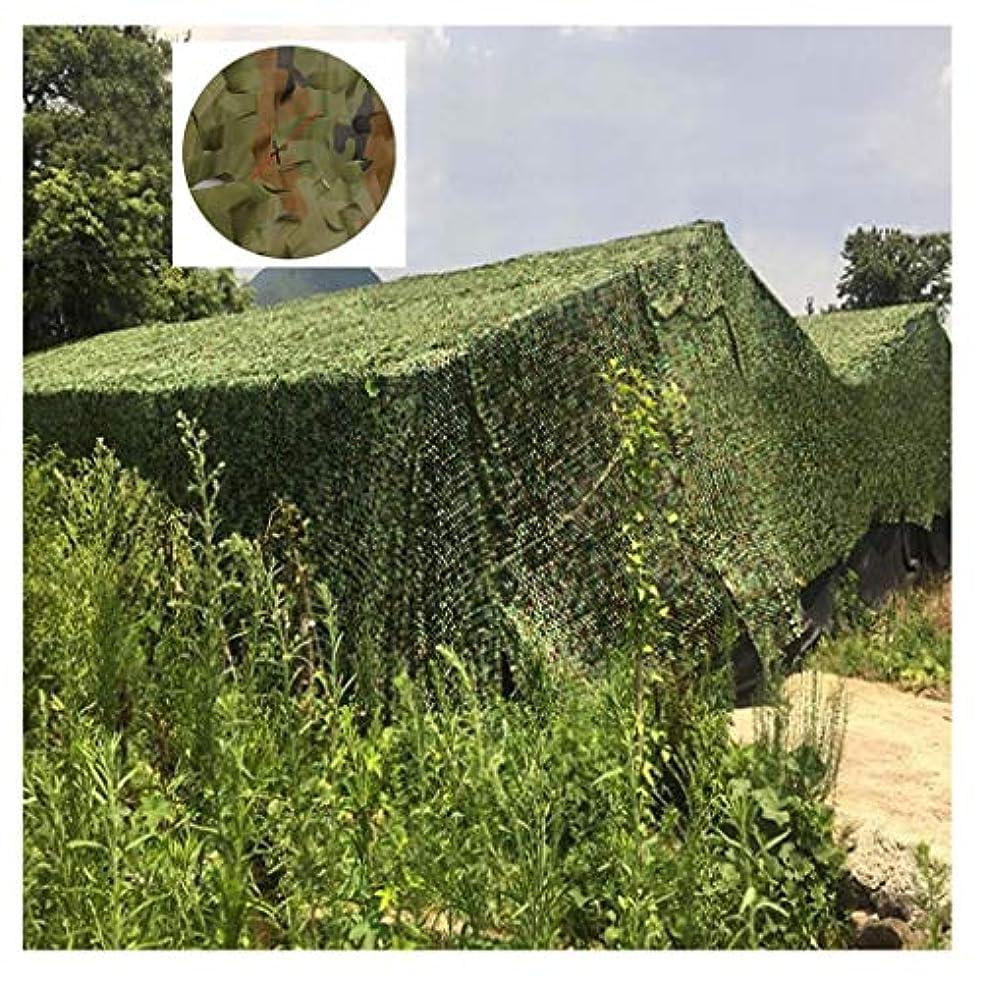 新聞不名誉なについてカスタマイズ可能な迷彩ネットジャングルグリーン迷彩葉ネット2×3メートル日焼け止めネット迷彩狩猟隠された庭屋外サイト写真様々な色 (Size : 3*3m(10*10ft))