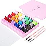 HIMI Gouache Paint Set 24 Vibrant Colors Non Toxic Paints Jelly Cup Design with Palette Paint Brushes Portable for Artist Can