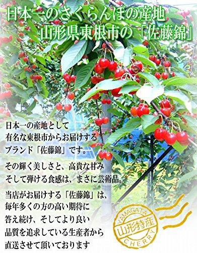 山形県産 秀品 L玉 さくらんぼ佐藤錦 700g 350g×2入 ギフトBOX