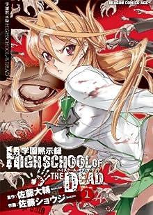 学園黙示録 HIGHSCHOOL OF THE DEAD(1) (ドラゴンコミックスエイジ)