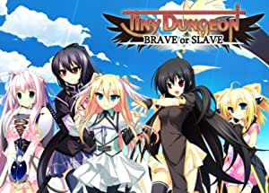 Tiny Dungeon -BRAVE or SLAVE-