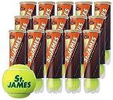 DUNLOP(ダンロップ)「St.JAMES(セントジェームス)(15缶/60球)」硬式テニスボール ¥ 7,800