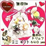 犬用バレンタイン マカロンとチョコレートのトリュフ ミニギフト NHK 放送 放映 TV ドッグフード 無添加 おやつ おしゃれで可愛い人気プレゼント