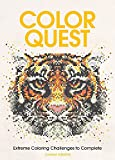 Color Quest Adult Coloring Book: Extreme Coloring Challenges to Complete -