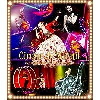 ayumi hamasaki ARENA TOUR 2015 A(ロゴ) Cirque de Minuit ~真夜中のサーカス~ The FINAL