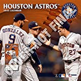 Houston Astros 2019 Calendar