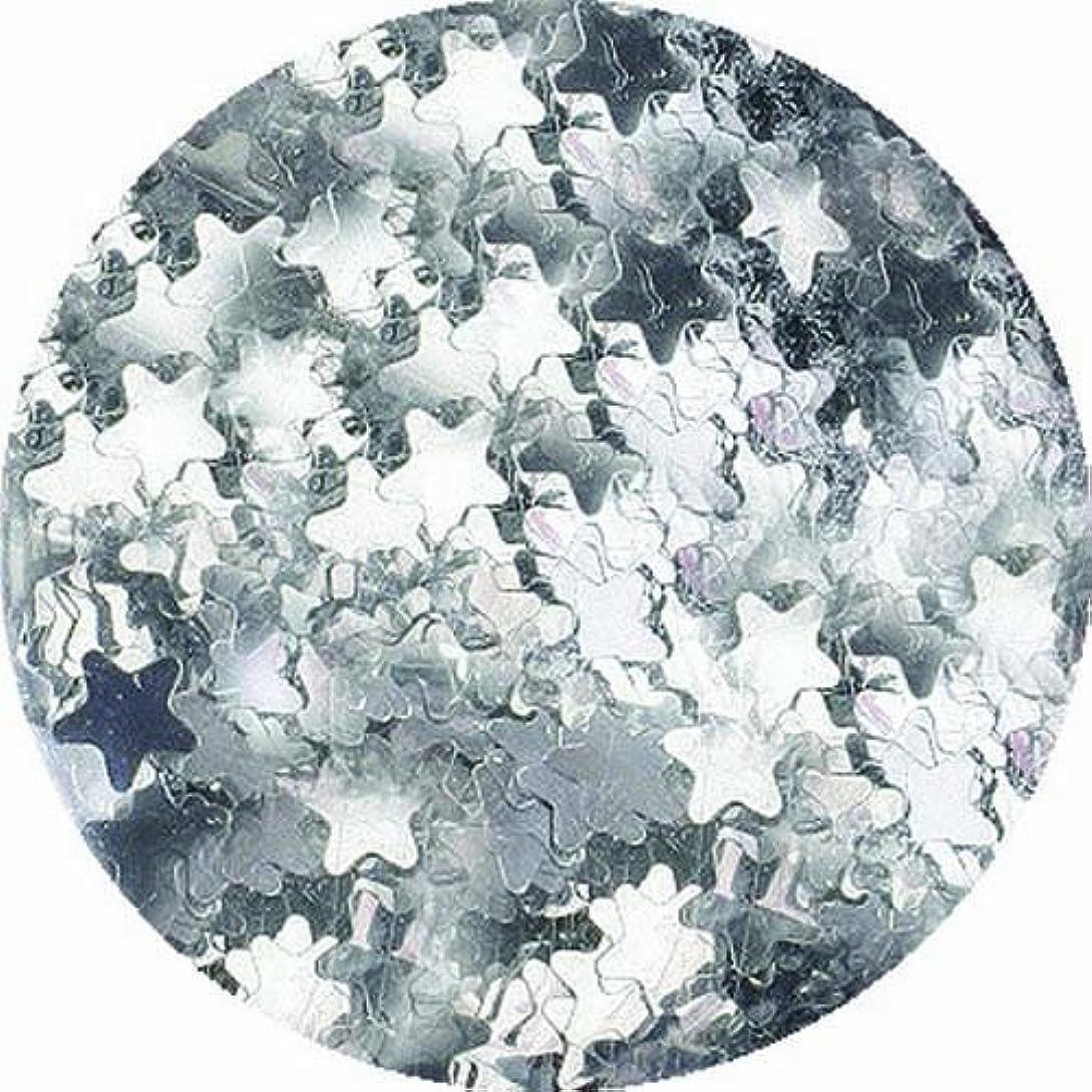 神経障害寛解花に水をやるビューティーネイラー ネイル用パウダー 黒崎えり子 ジュエリーコレクション シルバースター