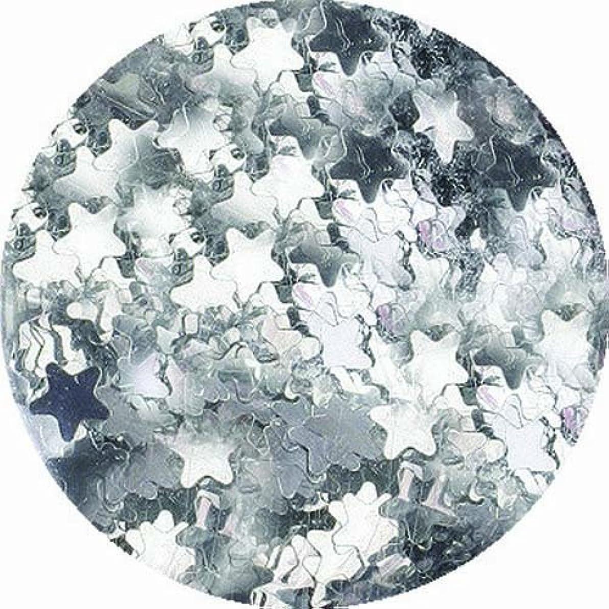 訴える保護詩人ビューティーネイラー ネイル用パウダー 黒崎えり子 ジュエリーコレクション シルバースター