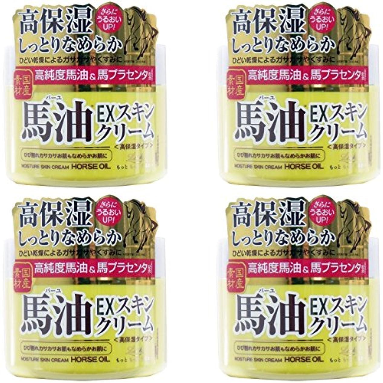 【まとめ買い】ロッシモイストエイド EXスキンクリームBA 100G【×4個】