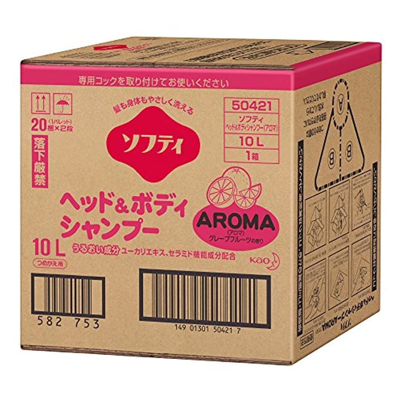弁護士重力物理的なソフティ ヘッド&ボディシャンプーAROMA(アロマ) 10L バッグインボックスタイプ (花王プロフェッショナルシリーズ)