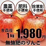 無農薬・無肥料 りんご サンふじ林檎 1kg ★「奇跡のリンゴ」で有名な木村秋則さん指導のもと完成した無農薬リンゴ