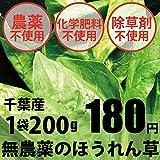無農薬・無化学肥料 ほうれん草 200g