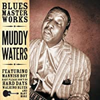Blues Masterworks-Muddy Waters