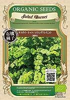 グリーンフィールド ハーブ有機種子 サラダバーネット/オランダワレモコウ [小袋] A160