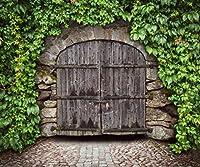 10x 8ft木製ドア中世BackdropsヴィンテージMiddle Age Stone壁写真背景アーチ木製ドアPhotoshoot For Studio小道具