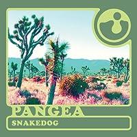 Snakedog [Analog]