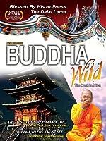 Buddha Wild Monk in a Hut [DVD]