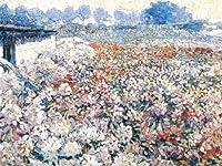 Rhododendron field-raphael–キャンバスまたはFine印刷壁アート Fine Paper - 30 x 40 5909DEA902A247588CE7999166943231