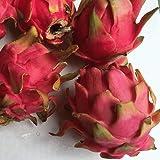 沖縄県産 訳あり ドラゴンフルーツ 赤 2kg 3~8個入り 送料無料