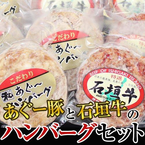 いしがきビーフ本舗 あぐー豚と石垣牛のハンバーグセット アグー豚 ハンバーグ100g×2パック 石垣牛 ハンバーグ100g×2パックの計4パック