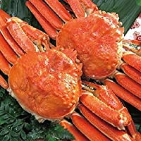 どさんこグルメマーケット ズワイガニ 姿 1.4kg (約700g×2尾) 蟹 かに お歳暮 ギフト ボイル 冷凍 大型 堅蟹 カニ味噌 ずわいがに