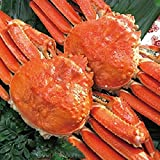どさんこグルメマーケット ズワイガニ 姿 計1.3kg (約650g×2尾入) 大型 カニ味噌 良品選別済 堅蟹