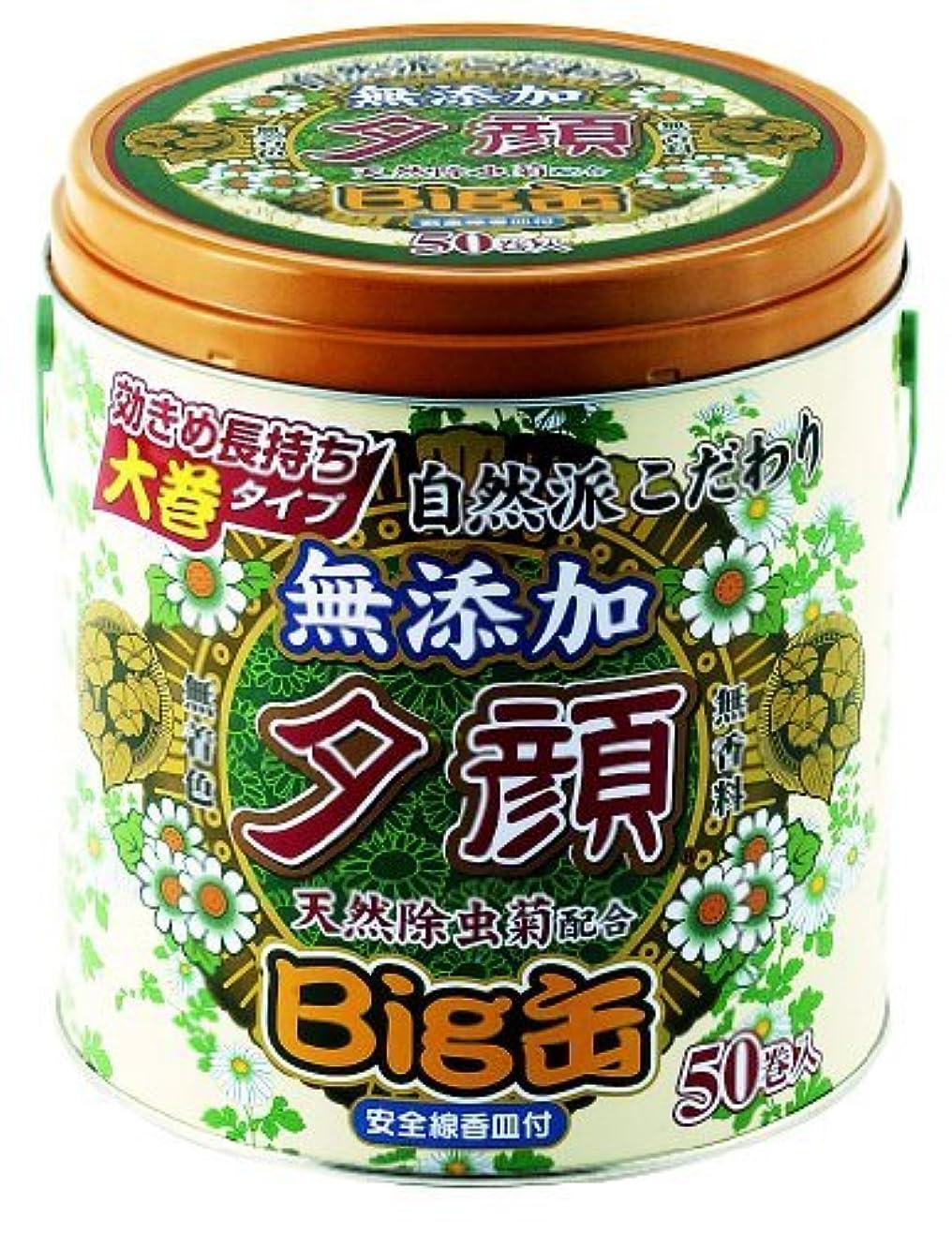 紀陽除虫菊 夕顔 天然 蚊とり線香 L50巻 Big 缶入【まとめ買い12個セット】 T-8504