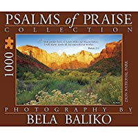 Psalms of Praise Towers 1000 Pieceパズル